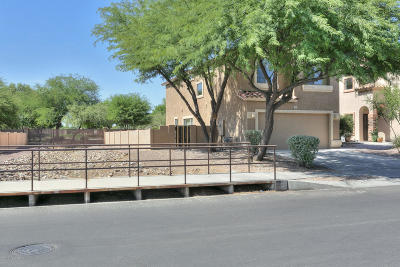 Sahuarita Single Family Home For Sale: 362 E Camino Rancho Cielo