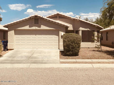 Tucson Single Family Home For Sale: 2481 S Ave Arroyo Rincon