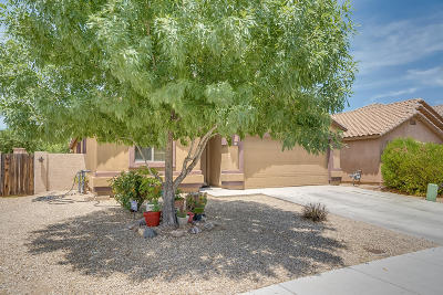 Sahuarita Single Family Home For Sale: 84 W Calle Patio Lindo