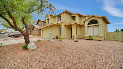 Tucson AZ Single Family Home For Sale: $250,000