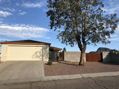 Tucson Single Family Home For Sale: 4938 S Manhattan Drive