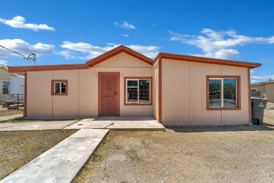 Tucson Single Family Home For Sale: 3562 S Clark Avenue