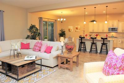 Tucson Single Family Home For Sale: 6032 W Yuma Mine Circle