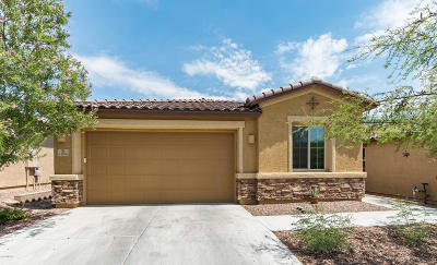 Marana Single Family Home For Sale: 12106 N Meditation Drive
