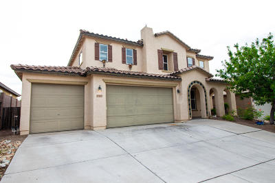 Single Family Home For Sale: 17164 S Painted Vistas Way