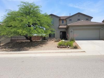 Cochise County Single Family Home For Sale: 1021 S Limestone Street