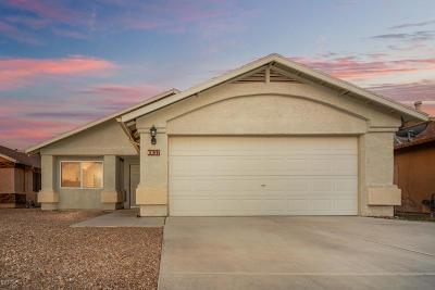 Tucson Single Family Home For Sale: 6657 S Avenida Mirella Bonita