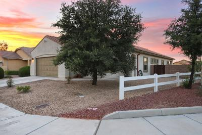 Marana Single Family Home For Sale: 11358 W Massey Drive