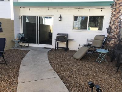 Tucson Condo For Sale: 1776 S Palo Verde Avenue #A-15