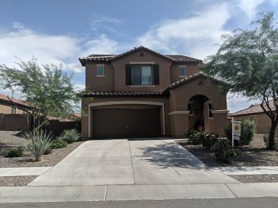 Tucson Single Family Home For Sale: 4273 W Beehive Peak Court