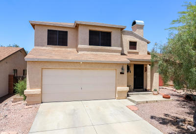 Tucson Single Family Home For Sale: 8521 N Spring Creek Drive