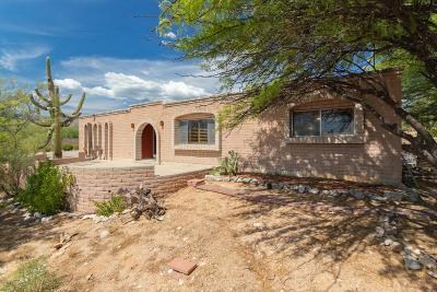 Pima County, Pinal County Single Family Home For Sale: 2620 N Tomahawk Trail