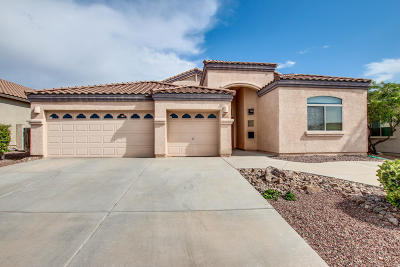 Single Family Home For Sale: 5301 W New Shadow Way
