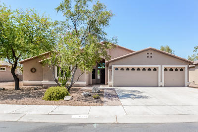Marana Single Family Home For Sale: 12537 N Stone Ring Drive