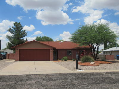 Cochise County Single Family Home For Sale: 3723 E Trevino Drive