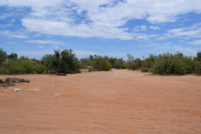 Residential Lots & Land For Sale: 13535 W Mustang Road