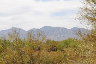 Tucson Residential Lots & Land For Sale: 12680 N Caminito Al Sol