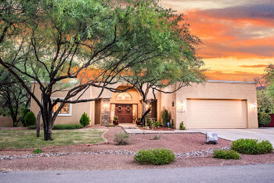 Pima County, Pinal County Single Family Home For Sale: 12061 E Fools Gold Circle