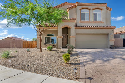 Marana Single Family Home Active Contingent: 14040 N River Branch Tr