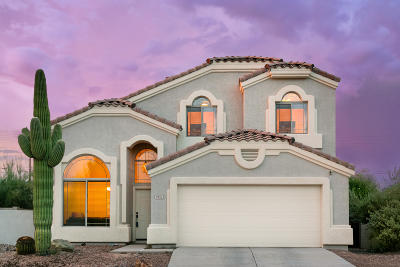 Pima County, Pinal County Single Family Home Active Contingent: 9553 E Shadow Lake Court