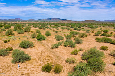 Residential Lots & Land For Sale: 16600 W Quinlin Trail