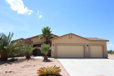 Marana Single Family Home For Sale: 10113 N Avra Vista Drive