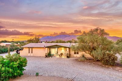 Single Family Home Active Contingent: 1791 S Calle Nopalito