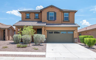 Oro Valley Single Family Home For Sale: 13572 N Vistoso Reserve Place