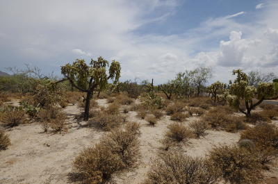 Tucson Residential Lots & Land For Sale: 2690 W Lambert Lane