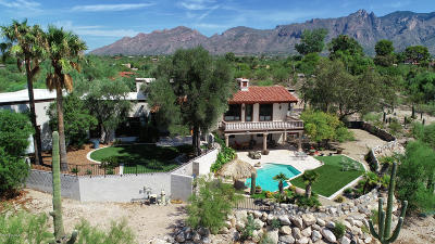 Pima County Single Family Home For Sale: 2700 E Camino A Los Vientos