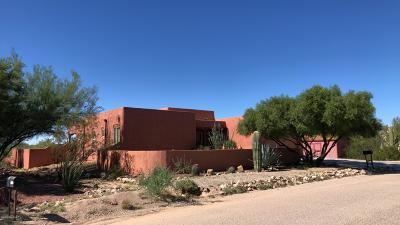 Tucson Single Family Home For Sale: 3968 S Wolf Spider Way