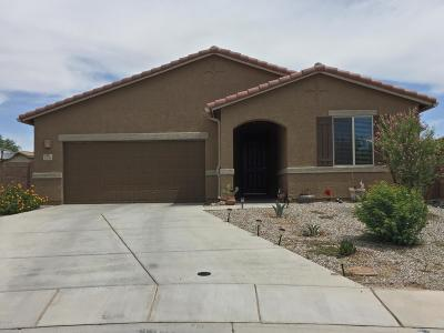 Marana Single Family Home For Sale: 11152 W Fountain View Drive W