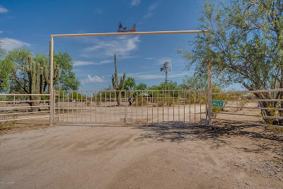 Marana Single Family Home For Sale: 32400 E Grand Valley Drive