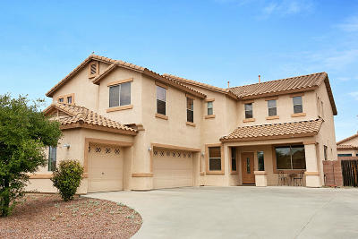 Pima County, Pinal County Single Family Home For Sale: 4907 N Louis River Way