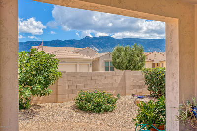 Tucson Single Family Home For Sale: 62924 E Border Rock Road