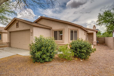 Single Family Home For Sale: 8813 E Chimney Spring Drive