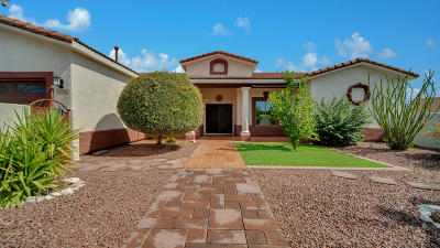 Sahuarita Single Family Home For Sale: 1538 W Placita Lluvia De Oro