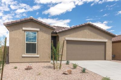 Single Family Home For Sale: 7786 W Long Cast Drive S