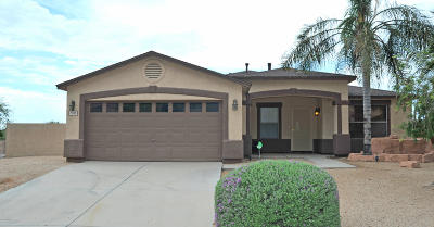 Single Family Home For Sale: 7130 W Pebble Valley Drive