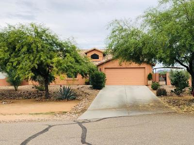 Pima County Single Family Home For Sale: 6843 S Star Ridge Place