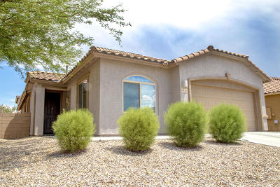 Pima County Single Family Home For Sale: 7445 S Mountain Star Drive