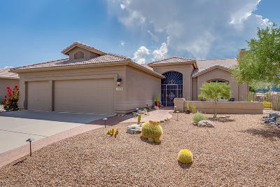Tucson Single Family Home For Sale: 37905 S Cleek Drive