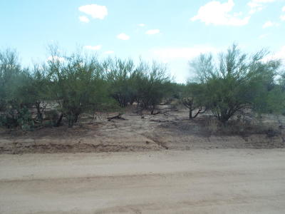 Tucson Residential Lots & Land For Sale: 12845 W High Ridge Drive