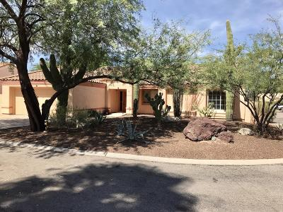 Tucson Single Family Home For Sale: 9825 N Sagebrush Place