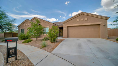 Tucson Single Family Home Active Contingent: 6143 S Eagle Cove Drive