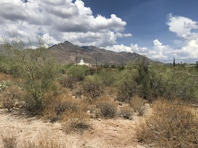 Residential Lots & Land Active Contingent: 7125 N Thunderhead Drive