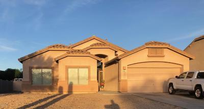 Pima County Single Family Home For Sale: 4411 S Camino De Oeste