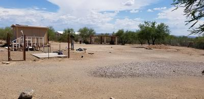 Tucson Residential Lots & Land For Sale: 9045 W Delfina Drive #127