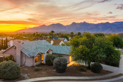 Single Family Home Active Contingent: 1421 N Desert Mallow Drive