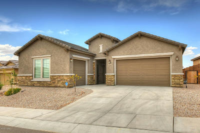 Pima County, Pinal County Single Family Home For Sale: 11897 N Renoir Way